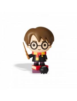 HARRY POTTER - Charm Harry...